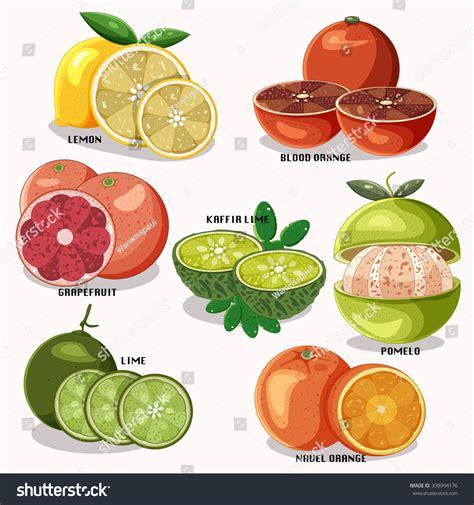 e fruit name fruits name more photos