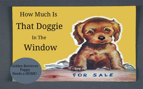 how much is that puppy in the window how much is that doggie in the window breeds picture