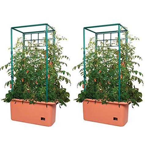 Tomato Planters On Wheels by Hydrofarm 10 Gallon Self Watering Tomato Trellis Garden On