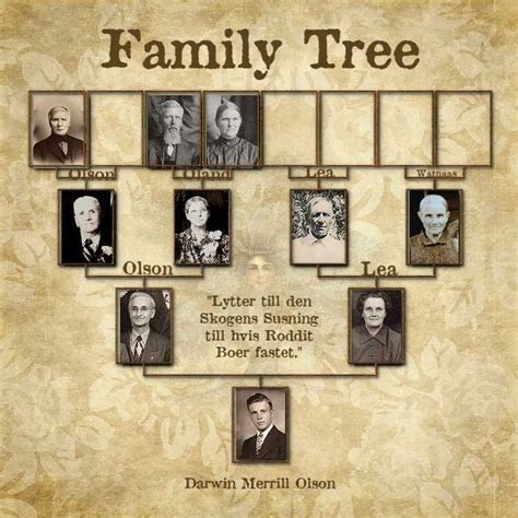 history and genealogy of the page family from the year 1257 to the present with brief history and genealogy of the allied families nash and peck classic reprint books family tree great heritage page scrapbooking layouts