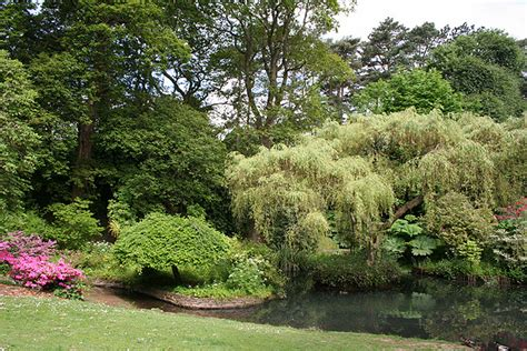 Treborth Botanic Garden List Of Gardens In Wales