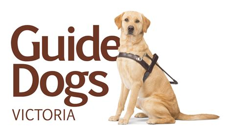 dogs walkthrough guide dogs pro bono australia