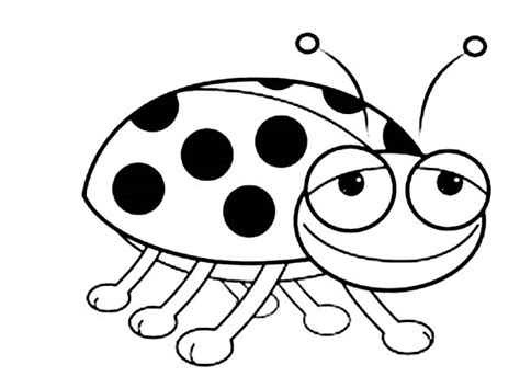 bed bugs color smiling lady bug coloring page color luna