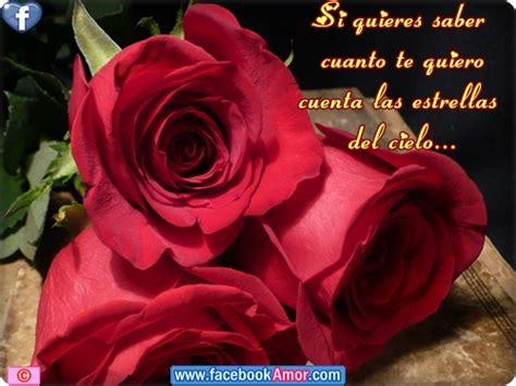 imagenes de rosas rojas con frases bonitas imagenes con rosas rojas gallery