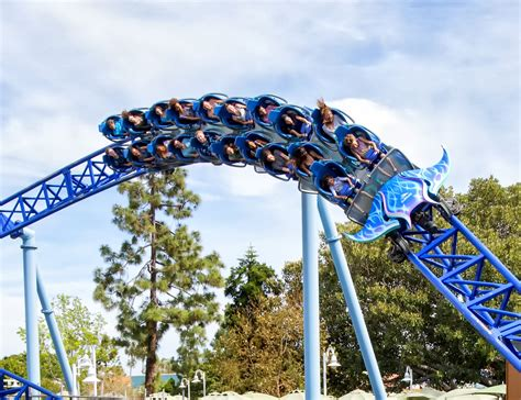 Detox By Seaworld by How To Buy Discounted Tickets To Seaworld San Diego Top