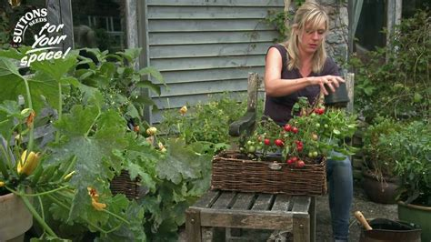 how to make the most of your small space garden