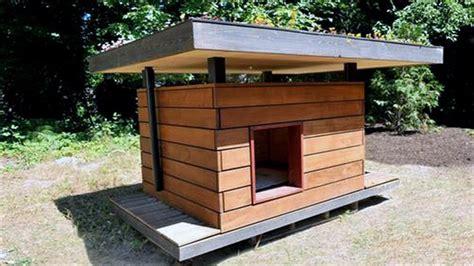 dog house garden dog house ideas for winter youtube