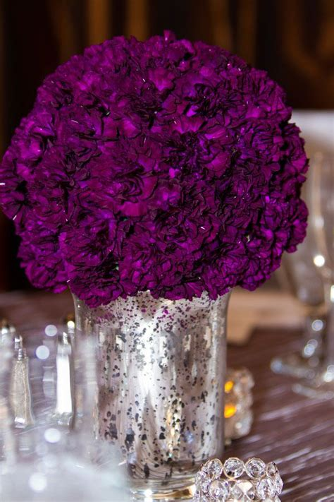 best 25 purple carnations ideas on purple