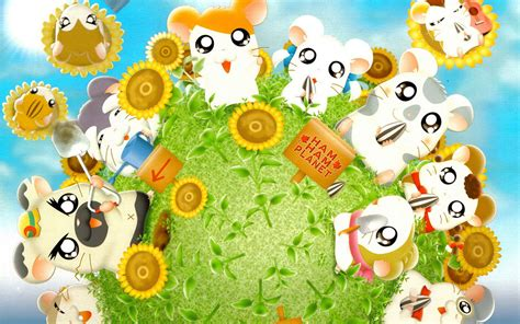 Download Game Home Design 3d For Pc cute hamster hamtaro anime wallpaper 6 anime wallpapers