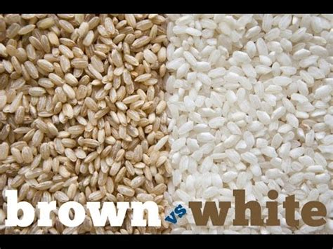 whole grains vs white brown rice vs white rice whole grain vs white which and