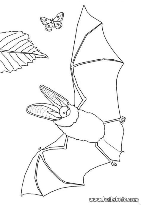 realistic butterfly coloring pages realistic bat butterfly coloring pages hellokids com