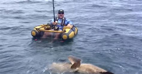 fishing boat load crossword amazing moment man reels in giant catch after going