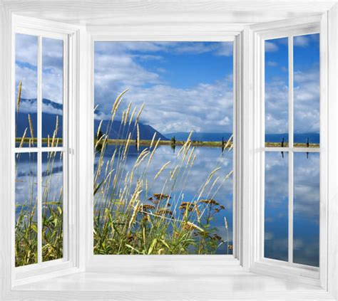 window wall murals wim20 view of lake idaho window illusion wall sticker