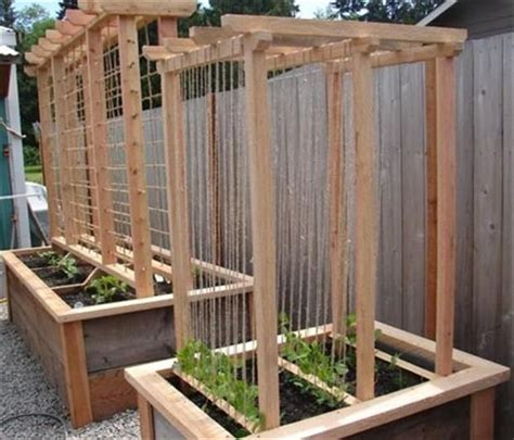 Vegetable Garden Trellis Designs Raised Bed Gardening With Rope Twine Quot Trellis Quot For