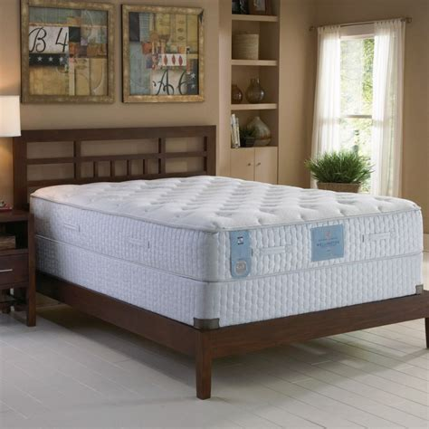 sears mattress comfort guarantee sears corporate complaints number 1 hissingkitty com