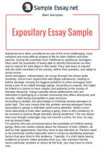 Expository Essay Exles For Middle School by Best Expository Essay Sles Sle Essay