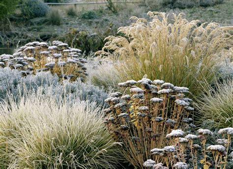 Garten Winterfest Machen Hortensien by Den Garten Winterfest Machen