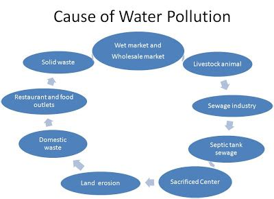 Causes And Effect Of Water Pollution Essay by Selayang Cause Of Water Pollution