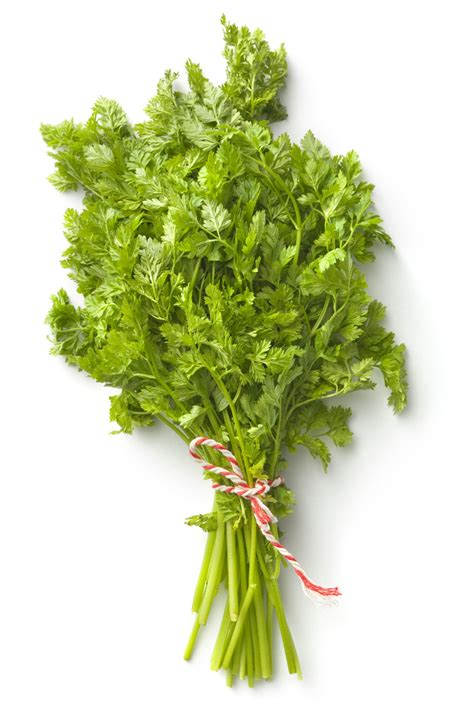 all about the herb chervil and substitute suggestions