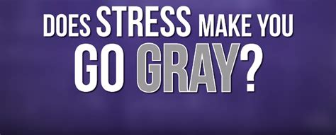 fact or fiction stress causes gray hair scientific american myth or fact will stress actually turn your hair gray