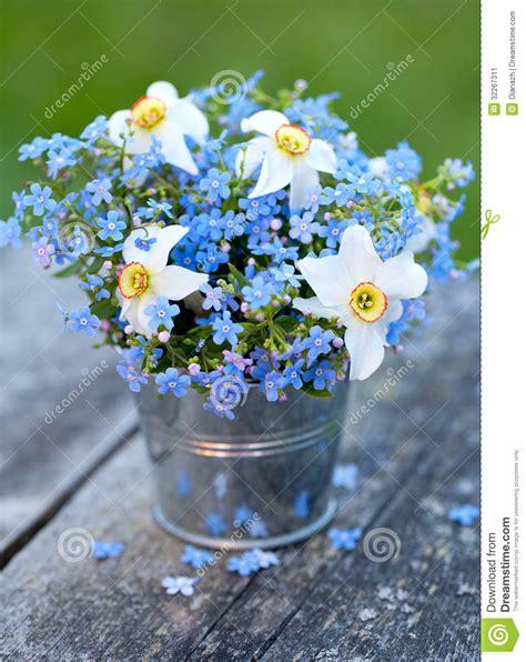 Vase For Plants 勿忘草和水仙花 库存图片 图片 32267311