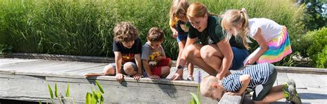 Volunteer Botanical Gardens Volunteer Phipps Conservatory And Botanical Gardens Pittsburgh Pa