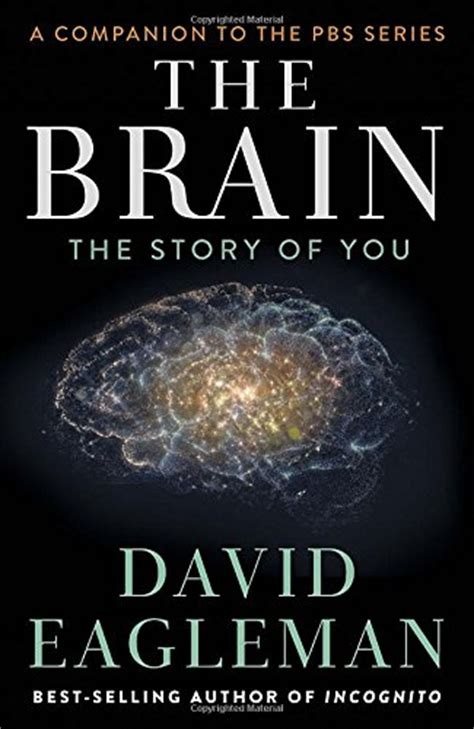 hello brain a book about talking to your brain books 10 myths about the human brain
