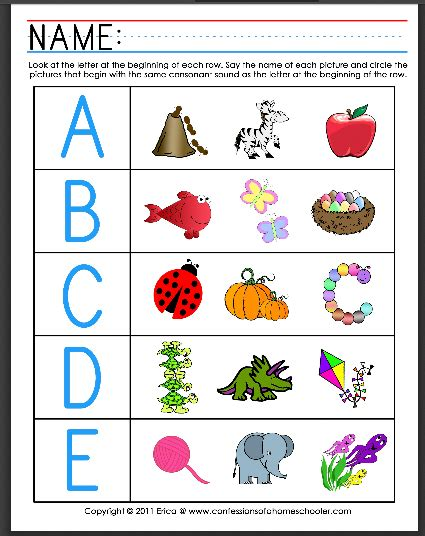 Galerry free printable plant activities