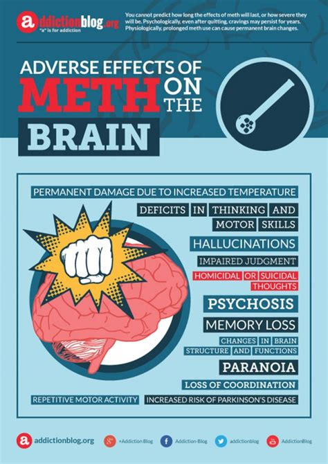 Effects Of Detox On The Brain by Adverse Effects Of Meth On The Brain Infographic