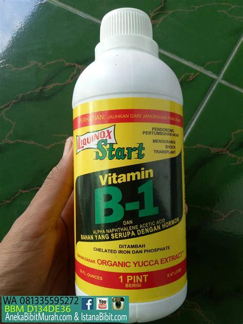 jual vitamin   tanaman harga grosir jual bibit
