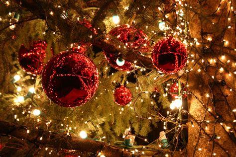merry christmas tree light noel santa