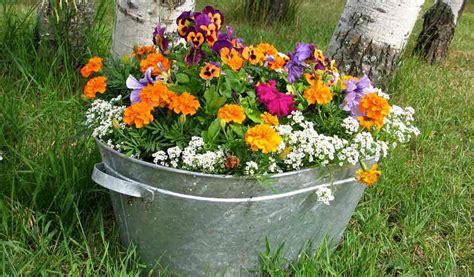outdoor container garden make a mother s day container garden farm and dairy