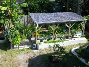 backyard aquaponics forum forum systems backyard aquaponics