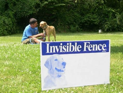 underground fence reviews best invisible fence an all inclusive review of the best invisible fences