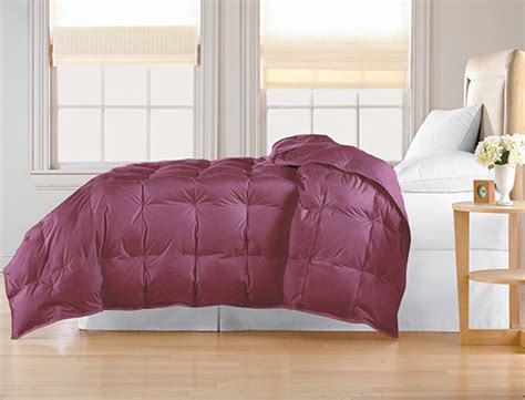 maroon down comforter all seasons white down comforter