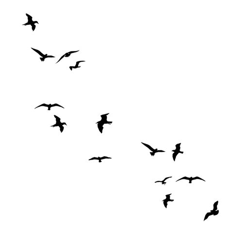 Flying Blackbird Outline by Blackbird Clipart Flying Crows Pencil And In Color Blackbird Clipart Flying Crows