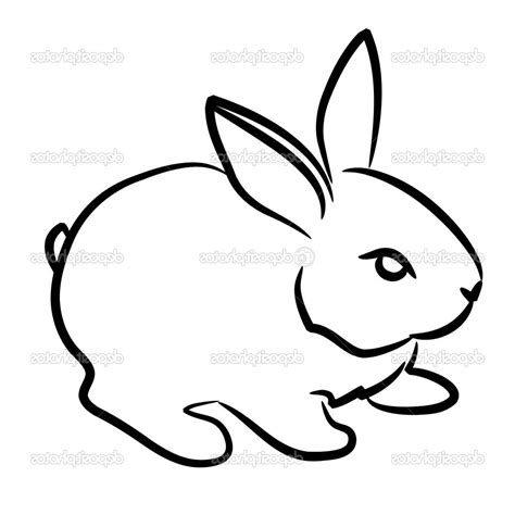 how to a rabbit easy drawing of a rabbit drawings nocturnal