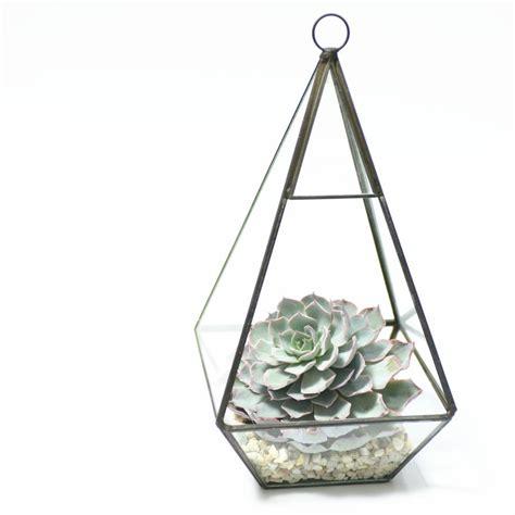 Vase Terrarium by Geometric Pyramid Glass Vase Succulent Terrarium By Dingading Terrariums Notonthehighstreet