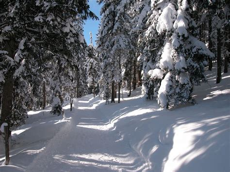 Pictures Of Homes by Winter Hiking Trail