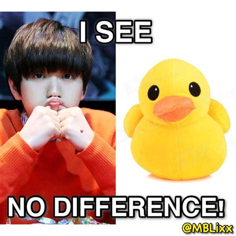 b1a4 sandeul macro meme quot i see no difference quot b1a4