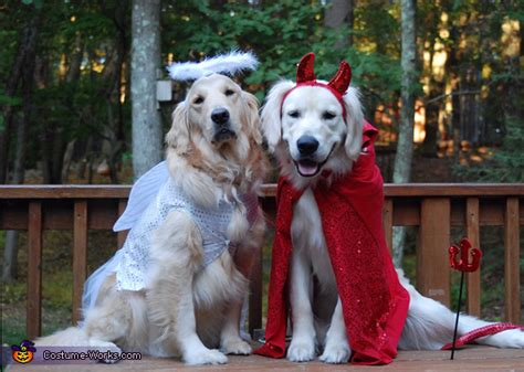 Diy Halloween Costumes 2019 For Dogs