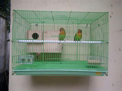 Tempat Pakan Burung Kayu tempat pakan hewan model kayu daftar harga terupdate