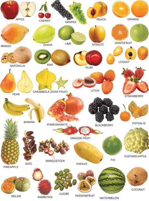 54 nama buah dalam bahasa inggris dari a z