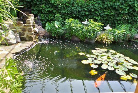 Kleine Teiche Anlegen by Teich Anlegen Tipps Zu Planung Bepflanzung Und Mehr