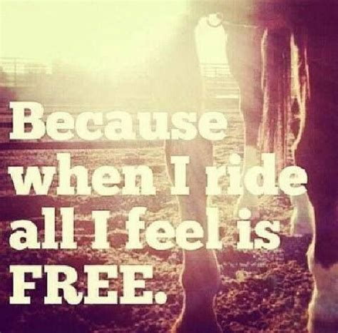 feel free boobles lafotografica pinterest sky free 230 best horses images on pinterest equestrian quotes