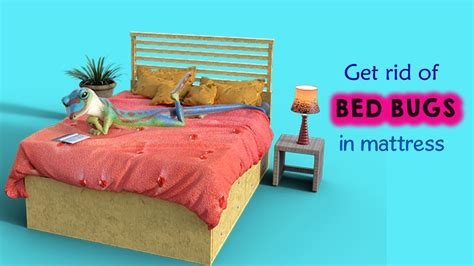Where Can I Get Cheap Bed Frames Marksburg Slat Headboard Where Can I Buy Cheap Bed Frames