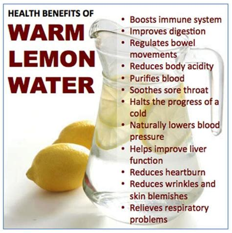 Lemon And Warm Water Detox Diet by 25 Best Ideas About Lemon Water On Honey