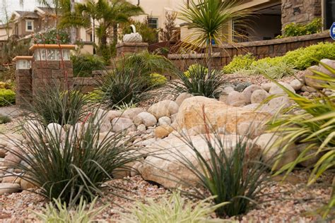 xeriscape backyard front yard tropical landscaping ideas