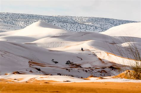 snow in desert sahara desert was blanketed under 16 inches of fresh pow