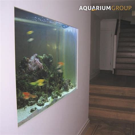 Aquarium In Wand by 1000 Ideas About Marine Fish On Mandarin Fish